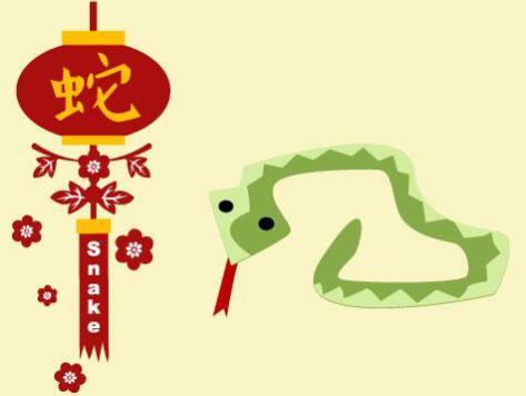 Snake-p11_476x357